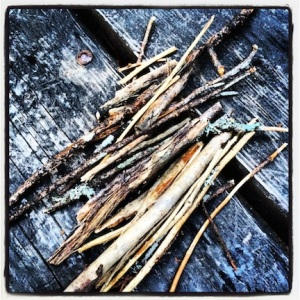 Gathering kindling for the fire