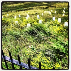 Graveyard @ Little Big Horn