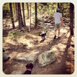 Following the boys up Beech Mountain