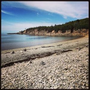 Rocky shoreline on the Bay of Fundy