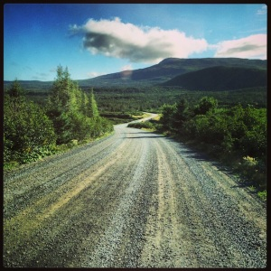 On the road, in Gros Morne NP