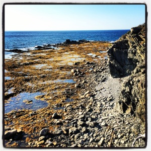 Hiking around Lobster Cove Head Lighthouse