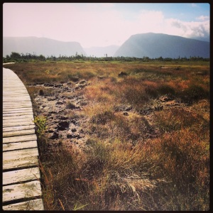 Hiking trail to get to Western Brook Pond Fjord