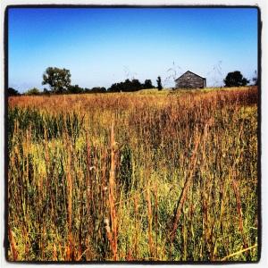 @ New Market Battlefield State Historical Park