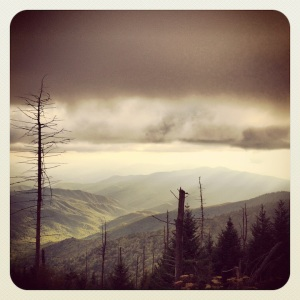 Great views on the walk up to Clingmans Dome observation tower